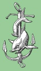 Dolphin anchor icon